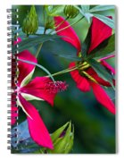Red Twins One Spiral Notebook