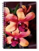 Red Twins Spiral Notebook