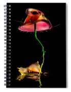 Red Umbrella Spiral Notebook