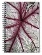 Red Veined Leaf Spiral Notebook