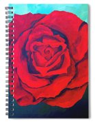 Red Velvet Spiral Notebook