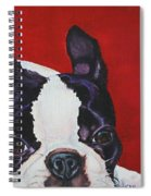 Red White And Black Spiral Notebook
