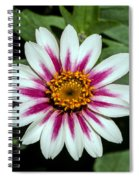 Red White And Yellow Flower Spiral Notebook