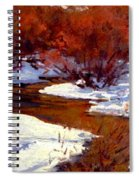 Red Willow Creek Spiral Notebook