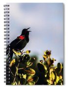 Red Wing Black Bird  Spiral Notebook