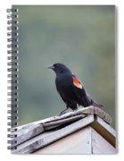 Male Red Wing Black Bird Spiral Notebook