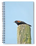 Red-winged Blackbird On Lookout Duty Spiral Notebook