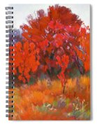 Red Woods Painting Spiral Notebook