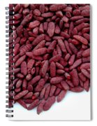 Red Yeast Rice Spiral Notebook