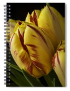 Red Yellow Tulip Spiral Notebook