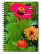 Red Yellow Zinnia Flowers Spiral Notebook