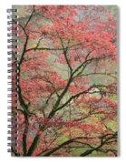 Red Zen Spiral Notebook