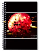 Red Zinnia Abstract Spiral Notebook