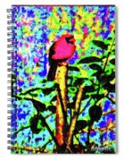 Redbird Dreaming About Why Love Is Always Important Spiral Notebook