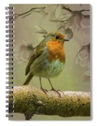 Redbreast Bird Spiral Notebook
