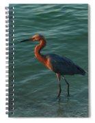 Reddish At Sunset Spiral Notebook