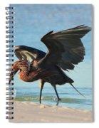 Reddish Egret Nabs A Fish Spiral Notebook