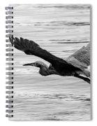 Reddish Flight Bw Spiral Notebook