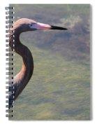 Reddish Portrait Spiral Notebook