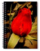Redrose Spiral Notebook