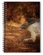 Redtail Morning Run Hawk Art Spiral Notebook