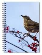 Redwing  - 2 Spiral Notebook