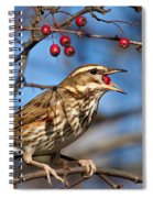 Redwing With Berry Spiral Notebook