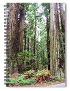 Redwood5 Spiral Notebook