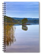 Reeds And An Islet In Lough Macnean Spiral Notebook