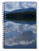 Reeds And Reflection Spiral Notebook