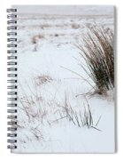 Reeds And Snow Spiral Notebook