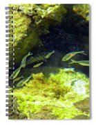 Reef Tide Pool Spiral Notebook