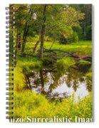 Reflected Light Spiral Notebook