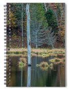 Reflected Tree Spiral Notebook
