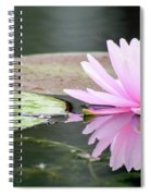 Reflected Water Lily Spiral Notebook