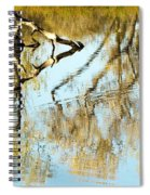 Reflecting A Former Life Spiral Notebook