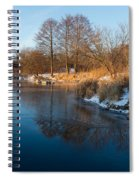 Reflecting In Threes - Three Trees By The Lake Spiral Notebook