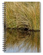 Reflecting Reeds Spiral Notebook