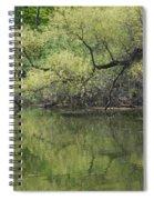 Reflecting Spring Green Spiral Notebook