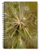 Reflecting The Golden Sunshine Of Love Spiral Notebook