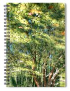 Reflecting Trees On Quiet Pond Spiral Notebook