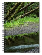 Reflection And Lines Spiral Notebook