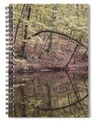 Ridge Run Reflection Spiral Notebook