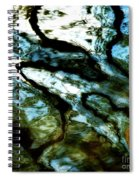 Reflection In Water Spiral Notebook