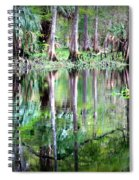 Reflection Of Cypress Trees Spiral Notebook