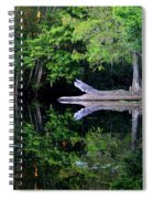 Reflection Off The Withlacoochee River Spiral Notebook