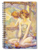 Reflections 1911 Spiral Notebook
