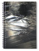 Reflections And Dark Ice #2  Spiral Notebook