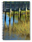 Reflections And Sea Grass Spiral Notebook