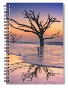 Reflections Erased - Botany Bay Spiral Notebook